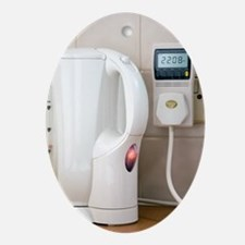 Kettle energy consumption - Oval Ornament