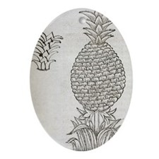 Pineapple, 16th century artwork - Oval Ornament