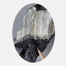 Asbestos mineral - Oval Ornament