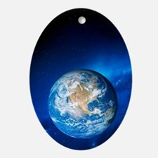 Earth - Oval Ornament