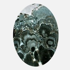 Native arsenic - Oval Ornament