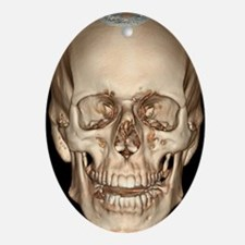 Normal skull, 3D CT scan - Oval Ornament