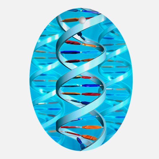 DNA helices - Oval Ornament