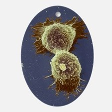 Breast cancer cells - Oval Ornament