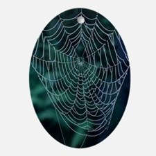 Spider's web, covered in dew - Oval Ornament