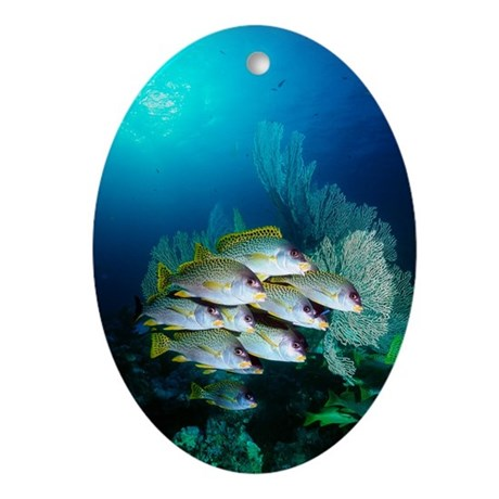 Sweetlips fish oval ornament by sciencephotos for Sweet lips fish