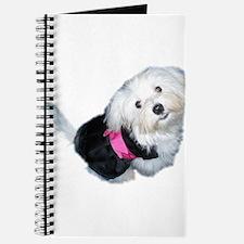 Cute Maltese art Journal