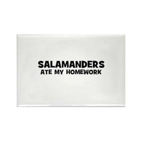 Salamanders Ate My Homework Rectangle Magnet
