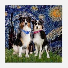 Starry & 2 Tri Aussies Tile Coaster