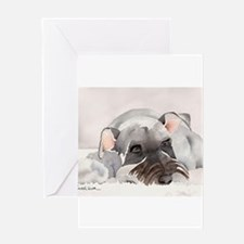 Miniature Schnauzer 2 Greeting Cards
