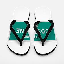 Josephine, Texas City Limits Flip Flops