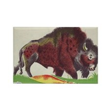 bison Rectangle Magnet (10 pack)