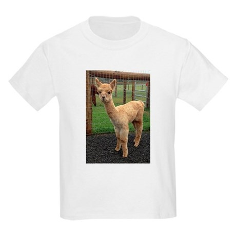 Little Orion T-Shirt