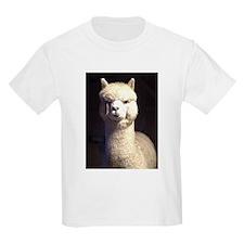 BoDiddley T-Shirt