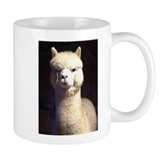 BoDiddley Mug