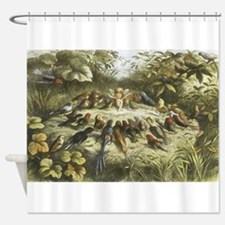 Fairy and Bird drawing Shower Curtain