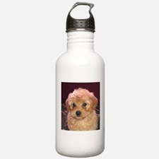 Labradoodle Pup Water Bottle