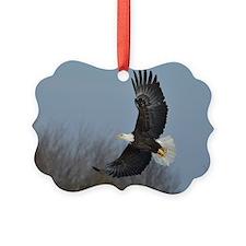 Bald Eagle soaring Ornament