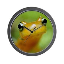 Salamander Wall Clock
