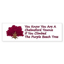 Chelmsford Beech Tree Bumper Sticker