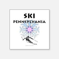 TOP Ski Pennsylvania Sticker