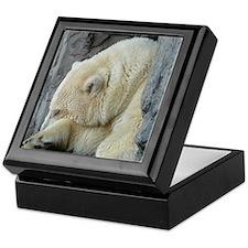 Central Park Zoo Polar Bear Keepsake Box