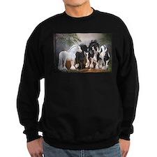 Gypsy Stallions Sweatshirt