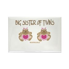 Big Sister Of Twins (2 Girls) Rectangle Magnet