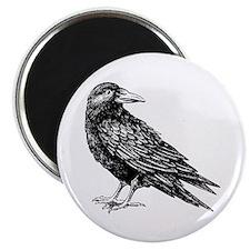 """Raven 2.25"""" Magnet (10 pack)"""