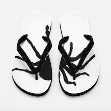 Spider Flip Flops