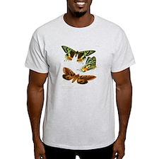 Madagascar Butterflies T-Shirt