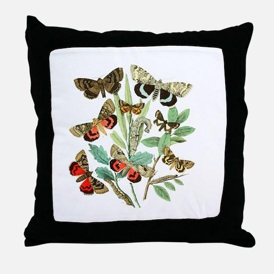 French Butterflies Throw Pillow
