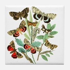 French Butterflies Tile Coaster