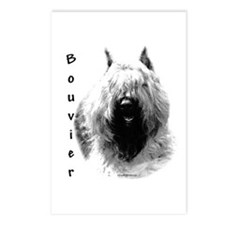Bouvier Charcoal Postcards (Package of 8)