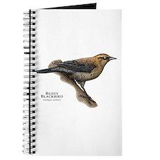 Rusty Blackbird Journal