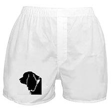 Sussex spaniel silhouette Boxer Shorts
