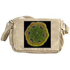 Clematis stem, SEM - Messenger Bag
