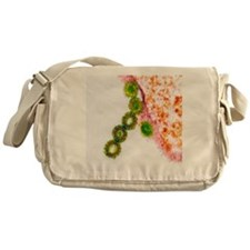 H1N1 swine flu virus, TEM - Messenger Bag