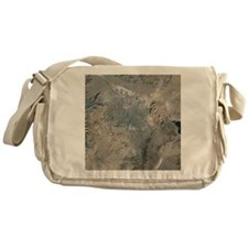 Las Vegas, satellite image, 2009 - Messenger Bag