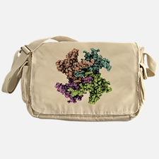 model - Messenger Bag