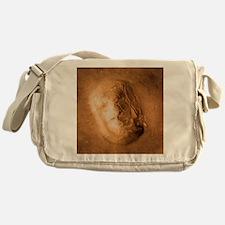 Face on Mars - Messenger Bag
