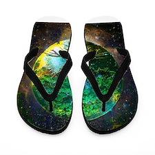 Health Healing Flip Flops