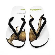 Gray Kangaroo Animal Flip Flops