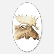 Moose Head Animal Decal