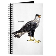 Crested Caracara Bird Journal
