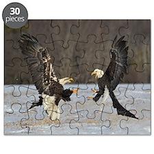Fighting Ealges Puzzle