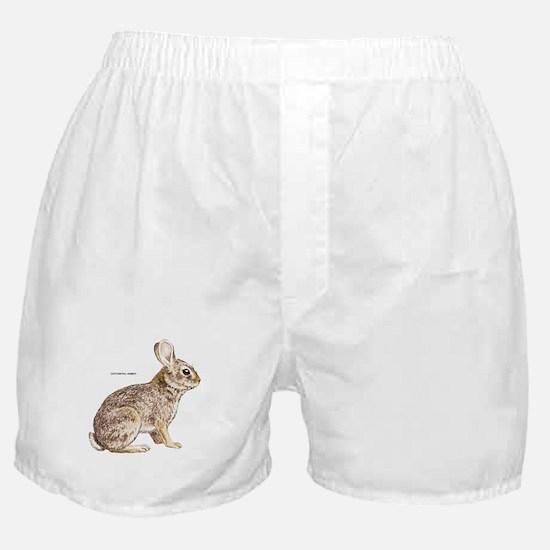 Cottontail Rabbit Boxer Shorts