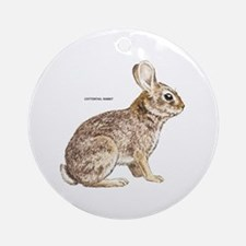 Cottontail Rabbit Ornament (Round)