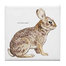 Cottontail Rabbit Tile Coaster