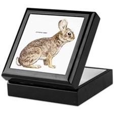 Cottontail Rabbit Keepsake Box